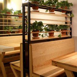 Las bancas con jardineras